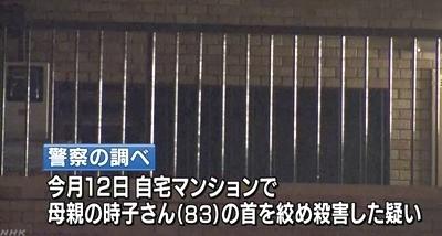 埼玉県さいたま市緑区母親殺害事件3.jpg