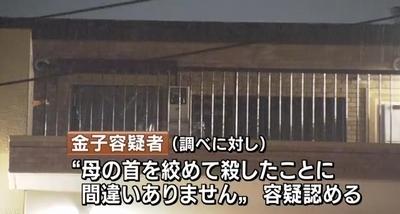 埼玉県さいたま市緑区母親殺害事件4.jpg