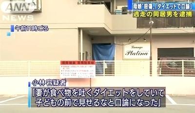 大阪府堺市母娘殺人殺傷事件5.jpg