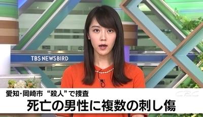 愛知県岡崎市男性殺人事件0a.jpg