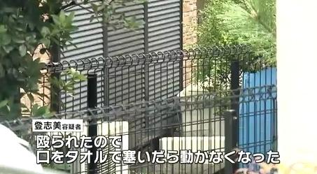 兵庫県尼崎市68歳夫殺人事件5.jpg