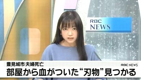 沖縄県豊見城市夫婦心中殺人事件.jpg