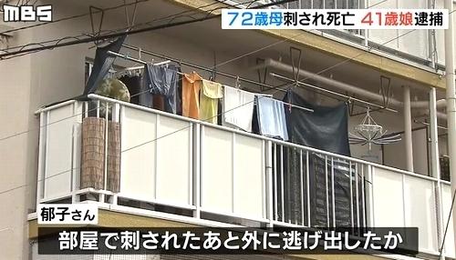 滋賀県近江八幡市団地母親刺殺で娘逮捕4.jpg