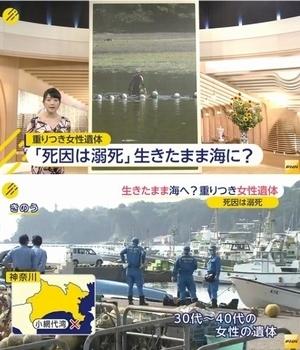 神奈川県三浦市女性溺死殺人事件.jpg