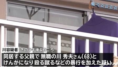 神奈川県平塚市父親惨殺事件1.jpg