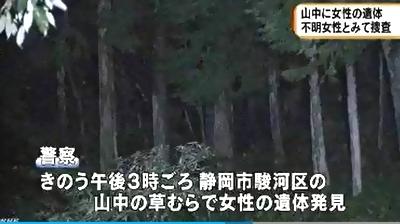 静岡市駿河区女性死体遺棄事件1.jpg
