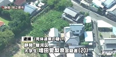 静岡県牧之原市の茶畑乳児遺体遺棄0.jpg